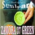 ZAMORA 37 GREEN EN PASTA