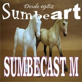 SUMBECAST M (CURACION MEDIA )