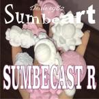 SUMBECAST R (CURACION RAPIDA )