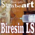 RESINA EPOXI BIRESIN LS