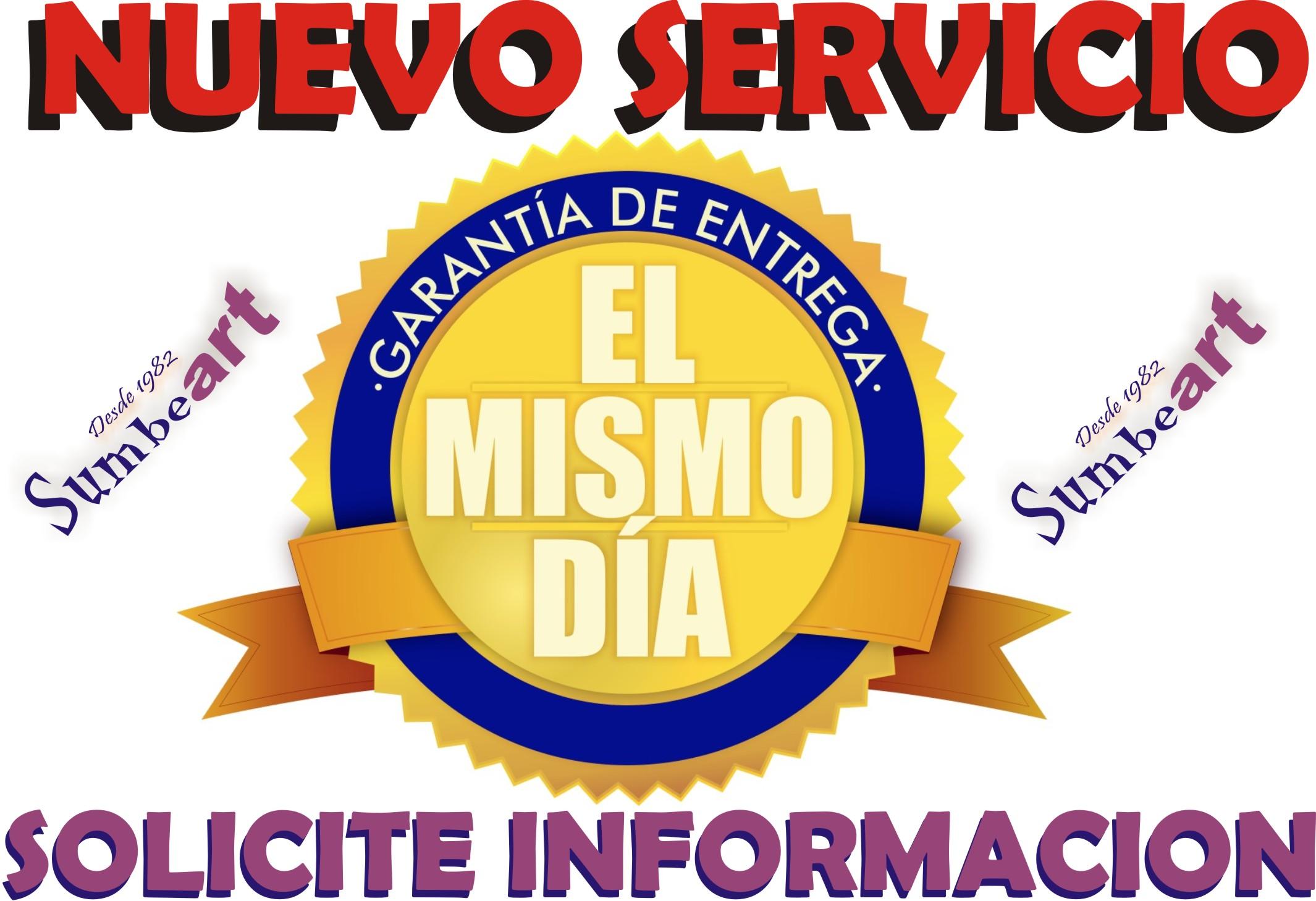SERVICIO ENTREGA EN EL MISMO DIA